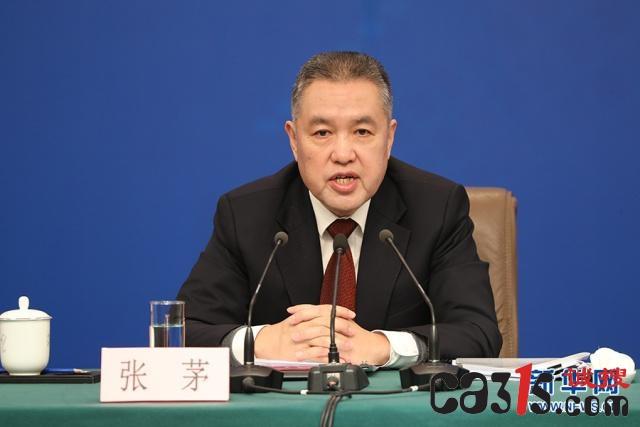 张茅:正确处理政府与市场的关系 不为企业行为背书站台